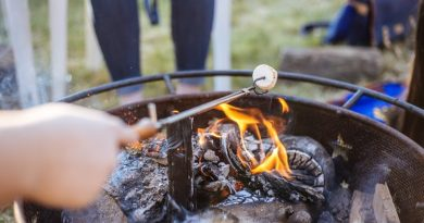 hand-holding-stick-with-marshmallow-over-flames-of-fire-pit