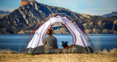 A woman sitting in an open tent with her dog while looking out over a blue lake and mountains