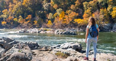 A woman standing on the rocky bank of a river in a national park with green and yellow trees on the other side