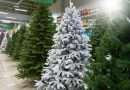 Artificial Christmas trees lined up in a store.